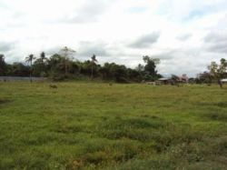 1303794156_192272505_6-1000-sqm-VACANT-LOT-TAGUM-CITY-DAVAO-del-NORTE-Philippines.jpg